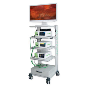 Ackermann Fusion Endoscopic Camera Line