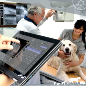OR Technology DR Veterinary Software
